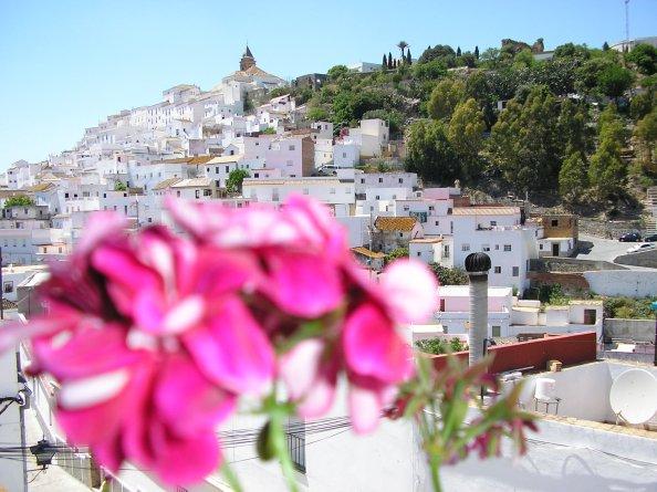 Foto: Elena. Casadebarbara.com