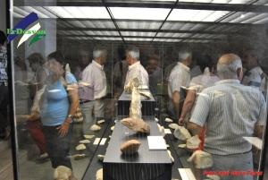 La gente de Antequera, familiarizada con la historia, observa atenta la riqueza de nuestro Museo.ErDesvan.com