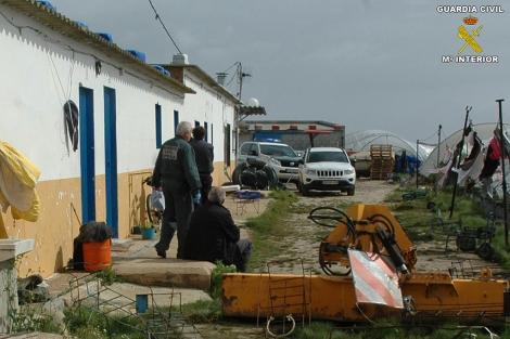Imagen facilitada por la Guardia Civil de la finca en Palos de la Frontera.
