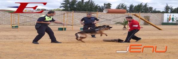 Unidades Caninas