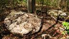 Aquí observamos los restos de una moldura.